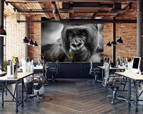 Malvis Tapeta Èernobílá gorila Vel. (šíøka x výška)  144 x 105 cm - zvìtšit obrázek