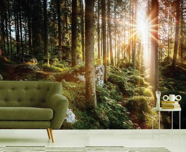 Malvis Tapeta klid v lese Vel. (šíøka x výška)  144 x 105 cm - zvìtšit obrázek