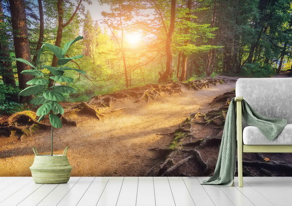 Malvis Tapeta Lesní cesta a slunce Vel. (šíøka x výška)  144 x 105 cm - zvìtšit obrázek