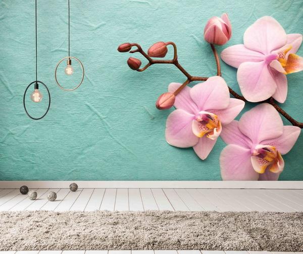 Malvis Fototapeta Orchidej Vel. (šíøka x výška)  144 x 105 cm - zvìtšit obrázek