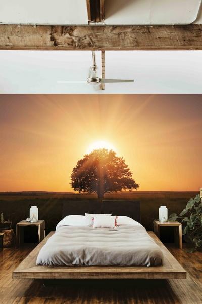 Malvis Tapeta Západ slunce Vel. (šíøka x výška)  144 x 105 cm - zvìtšit obrázek