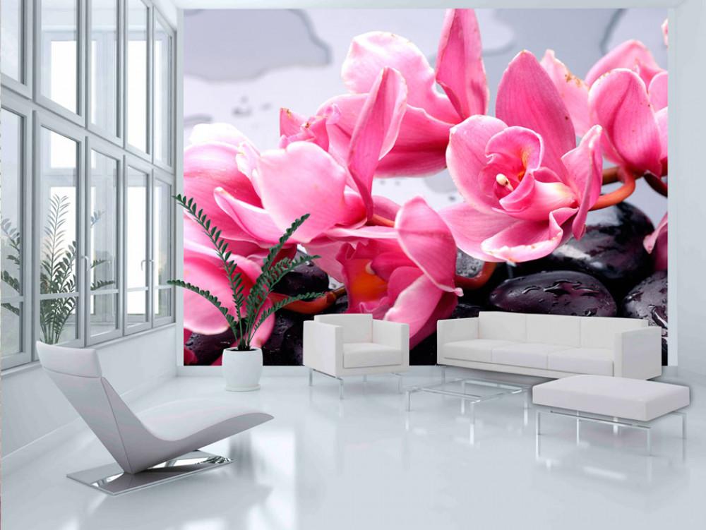 Murando DeLuxe Tapeta Orchidej na lávových kamenech  - zvìtšit obrázek