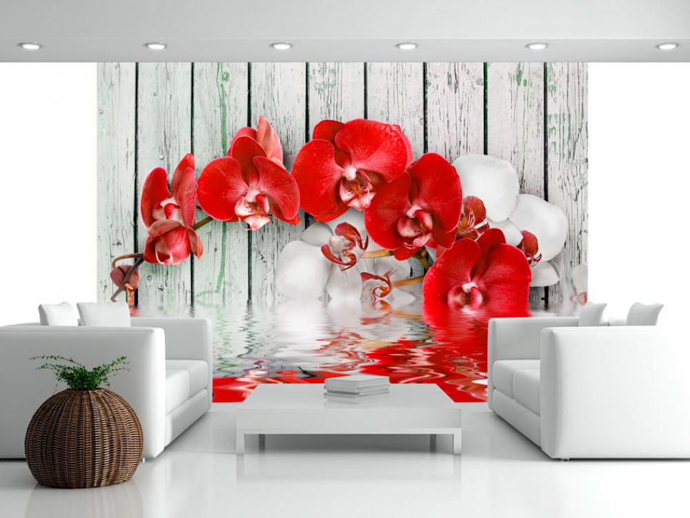 Murando DeLuxe Tapeta Èervená orchidej na døevì  - zvìtšit obrázek