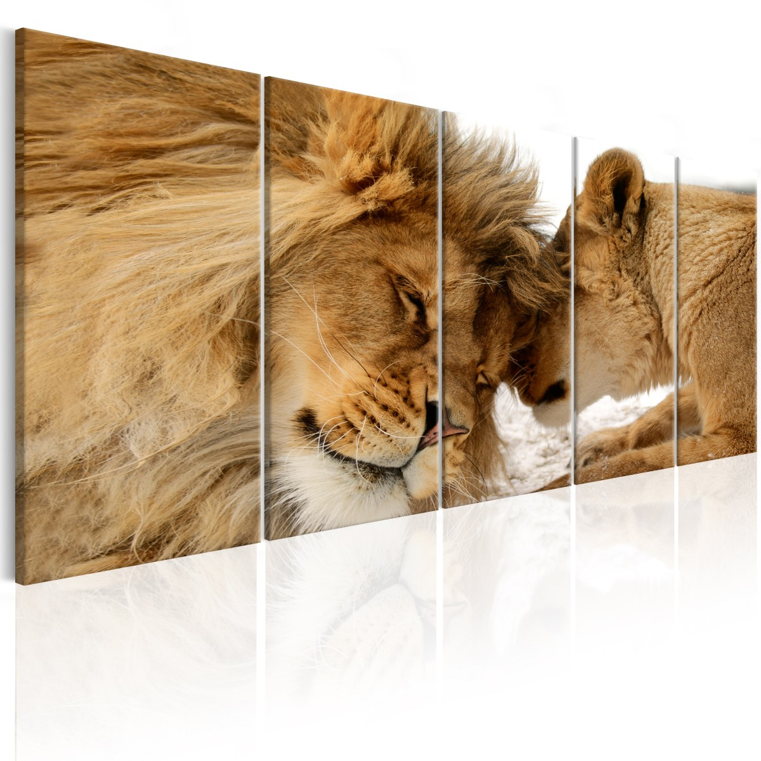 Murando DeLuxe Vícedílný obraz - zvíøecí láska  - zvìtšit obrázek
